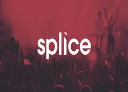 Inside Splice Sounds: How Sample Store Fosters Innovative Artist-to-Artist Content